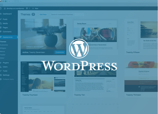 Hosting optimerad för WordPress
